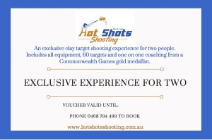 Clay target shooting experience for two people